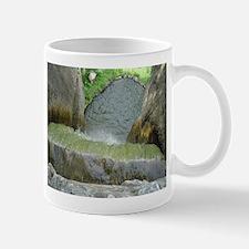 Over the Waterfall Mug