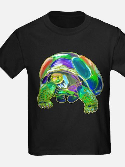 Rainbow Tortoise T