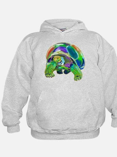 Rainbow Tortoise Hoodie