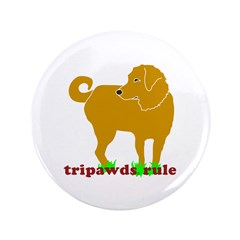 "Golden Tripawds Rule 3.5"" Button"