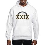 29er Hooded Sweatshirt