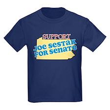 Support Sestak T