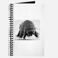 Tardigrade Journal