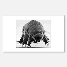 Tardigrade Rectangle Decal