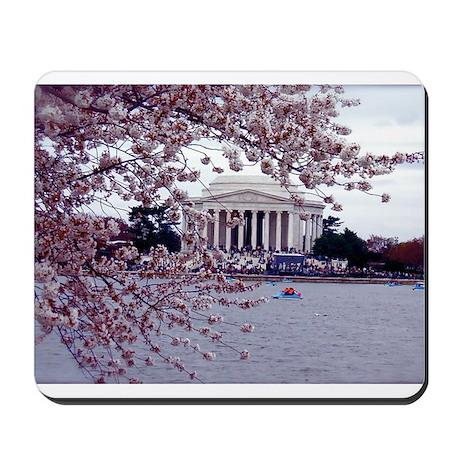 Cherry Blossoms, Washington, DC Mousepad