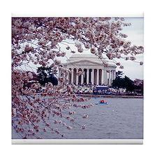 Cherry Blossoms, Washington, DC Tile Coaster