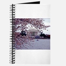 Cherry Blossoms, Washington, DC Journal