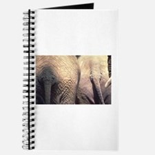 Nothing Butt Elephants Journal