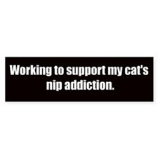 Catnip Addiction (Bumper Sticker)