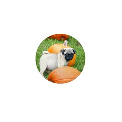 Pug in Pumpkins Mini Button (100 pack)