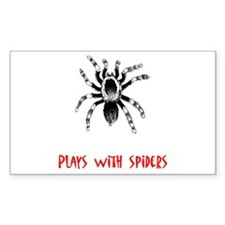 Plays With Spiders Rectangle Decal