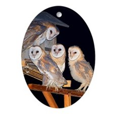 Four Owlets Ornament (Oval)