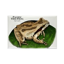 Pacific Tree Frog Rectangle Magnet