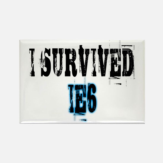 I Survived IE6 Rectangle Magnet