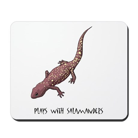 Plays With Salamanders Mousepad
