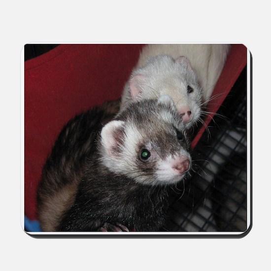Loveable Ferrets Mousepad