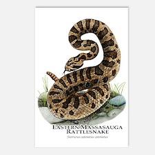 Eastern Massasauga Rattlesnake Postcards (Package