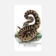 Eastern Massasauga Rattlesnake Sticker (Rectangle)