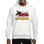 Not Totally Useless - Snowmobili Hooded Sweatshirt