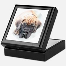 Ransom Fawn Puppy Keepsake Box