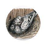 "Nesting Pigeons 3.5"" Button (100 pack)"