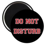 Do Not Disturb Magnet
