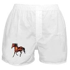 Cantering Bay Horse Boxer Shorts