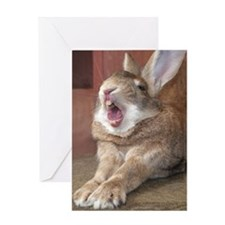 Bunny Yawn Greeting Card