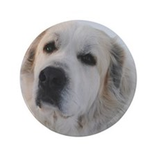 """Great Pyrenees 3.5"""" Button"""