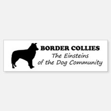 Border Collies Sticker (Bumper)
