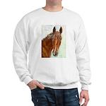 Hobbs Sweatshirt