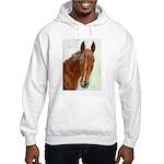 Hobbs Hooded Sweatshirt