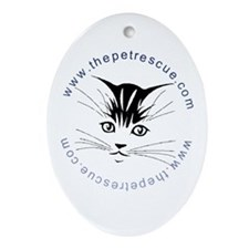 Pretty kitty face (small) Ornament (Oval)