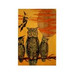3 Owls Rectangle Magnet