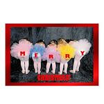 Sugar Plum Fairies Postcards (Package of 8)