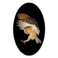 Molly Flying In Sticker (Oval)