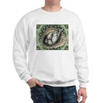 Nesting Pigeons Decorative Sweatshirt