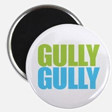 Gully Gully Magnets
