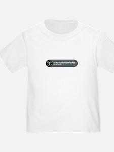 Put on a shirt T