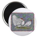 White Holland Turkeys Magnet