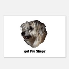 got Pyr Shep? Postcards (Package of 8)