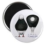 Tumbler Baldhead Pigeon Magnet