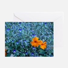Electric Blue Greeting Cards (Pk of 10)