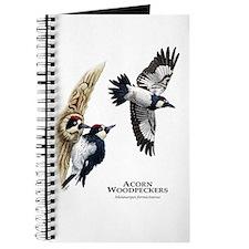 Acorn Woodpeckers Journal