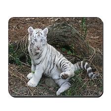 Mousepad-Tiger