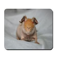 Mousepad-Skinnies