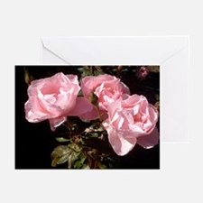 Pink Threesome Greeting Cards (Pk of 10)