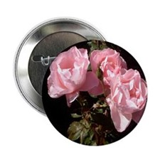 Three Pink Roses Photo Button