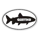 Quetico 10 Pack