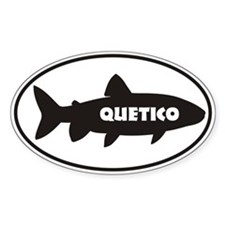 Quetico Trout Window Sticker Sticker (oval)